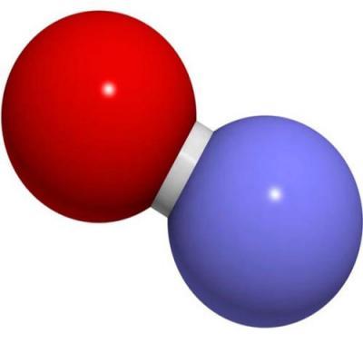 Vai trò của việc đo nitric oxide trong khí thở ra trong đánh giá tình trạng viêm đường dẫn khí ở bệnh hen. Quan điểm của hội phổi các nước nói tiếng pháp